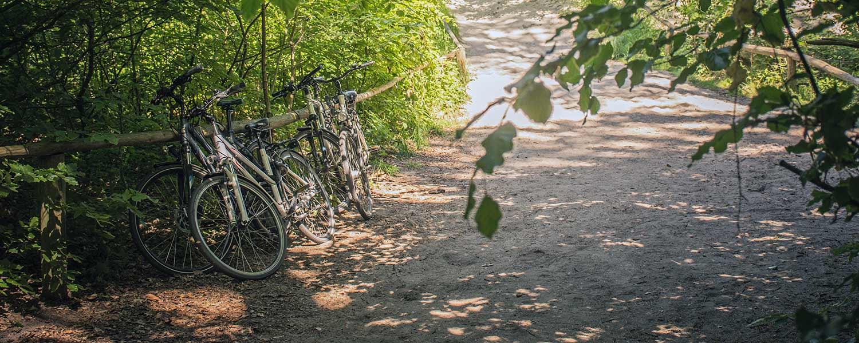 Strand Fahrräder Ostsee Usedom